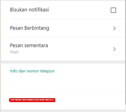 Cara Menghilangkan Info di Whatsapp